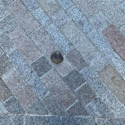 Pavement Shell